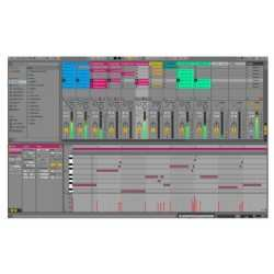 ABLETON LIVE 10 Suite upgrade from 10 Standard(download)