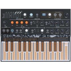 ARTURIA MICROFREAK sintetizzatore ibrido parafonico 25 tasti